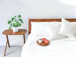 green bedroom feng shui plants in bedroom feng shui photo green plants in bedroom feng