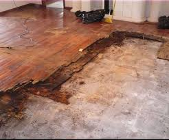 cost to install engineered wood flooring image collections home