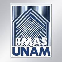 imagenes matematicas aplicadas terna para dirigir el instituto de investigaciones en matemáticas