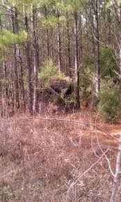Bow Ground Blind Best 25 Ground Blinds Ideas On Pinterest Hunting Ground Blinds