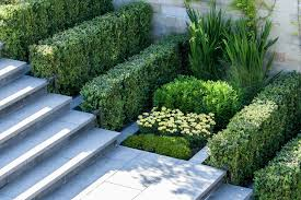landscape design photos how to add modern elements to your landscape design freshome com