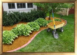 Backyard Gold Kanavas Landscape Management