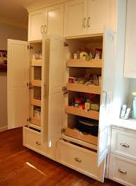 kitchen pantries ideas kitchen pantry design ideas remodel pictures houzz pictures of