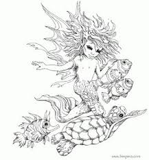 fairy mermaid coloring pages 86 best mermaids cp images on pinterest coloring books mermaid