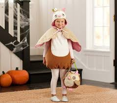 owl halloween costume size 2t 3t pottery barn kids