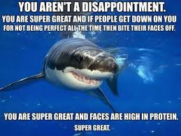 Funny Shark Meme - self esteem shark animal capshunz funny animals animal captions