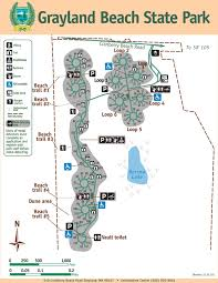 grayland beach state park m jpg