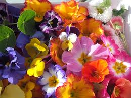 edible flowers buy edible flowers seasonal mix edible flowers for using on