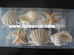 shower curtains seashells gustitosmios