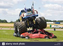 the monster truck bigfoot bigfoot monster truck in action driving over cars stock photo
