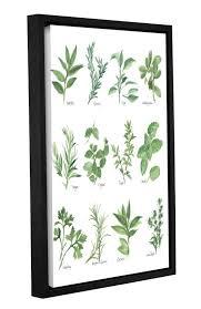 herb chart herb chart framed graphic art in white green reviews joss main