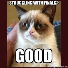 Make Your Own Cat Meme - tard the grumpy cat struggling with finals good l o l