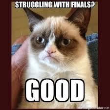 Good Cat Meme - tard the grumpy cat struggling with finals good l o l