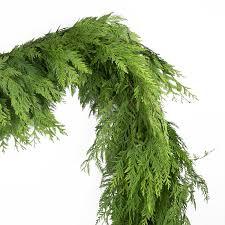 fresh cedar garland williams sonoma