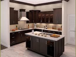 satiating illustration spellbound low budget kitchen cabinets