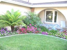 Florida Garden Ideas Florida Garden Ideas Florida Landscape Shrubs