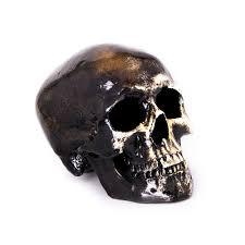 rainy grave skull ornament atelier poly garage