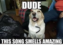 Stoned Dog Meme - city paper galleries the weekend funny 10 stoned dog memes