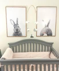 best 25 bunny nursery ideas on pinterest bunny art spearmint