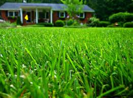 Ready For Spring by Snow Melting How To Get Your Yard Ready For Spring