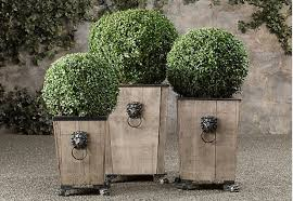 Topiary Planters - gift guide tiny topiaries for the apartment dweller gardenista