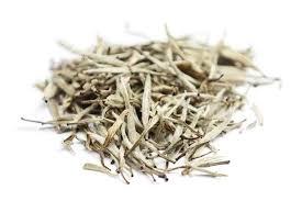 Teh Putih manfaat teh putih dan cara menyajikannya alodokter