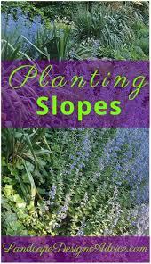 Slope Landscaping Ideas For Backyards Backyards Winsome Plants For Backyard Landscaping Backyard