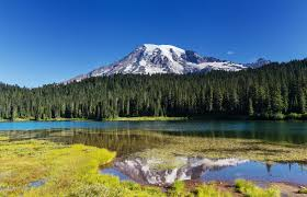 Washington State Topographic Map by Mount Rainier Topo Map Pierce County Wa Mount Rainier West Area