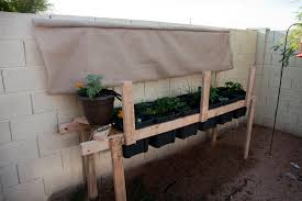 watering how often should i water my vegetable garden in arizona