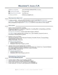 resume objective statement for business management resume opening statement exles best of resume for career change