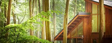 luxury treehouse holidays u0026 breaks in the uk