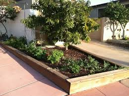top backyard landscaping ideas san diego architecture nice