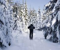 adirondack winter guide events outdoor activities more