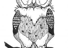 black and white owl designs 30 best owl designs