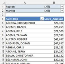 when to use pivot tables use excel pivot tables to get top and bottom views dummies