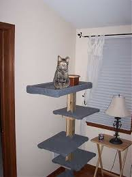 Free Diy Cat Tree Plans by Wood Dog Cage Plans Free Cat Furniture Plans