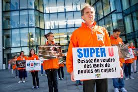 systeme u siege index of var albums manifestations 2014 cruaute happening devant