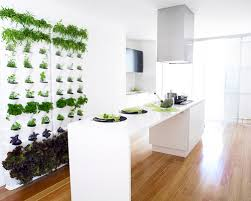 why indoor vertical gardens are good for your home u0026 health