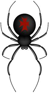 clipart halloween spider clipart collection spider web clipart