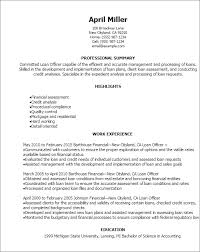 Summary Resume Sample by Professional Loan Officer Resume Templates To Showcase Your Talent