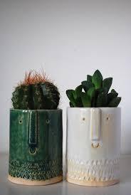 32 best cactus succulent images on pinterest cactus home and plants