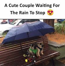 Cute Couple Meme - dopl3r com memes a cute couple waiting for the rain to stop