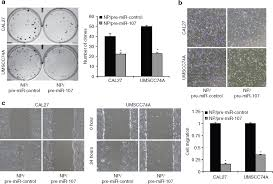 Np Full Form Lipid Based Nanoparticle Delivery Of Pre Mir 107 Inhibits The