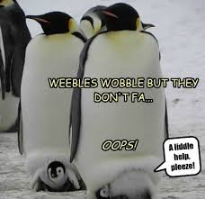 Cute Penguin Meme - i can has cheezburger weeble wobble funny internet cats cat