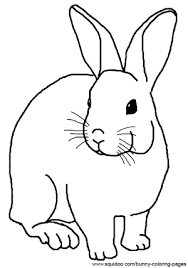 realistic rabbit coloring pages bunnies rabbit