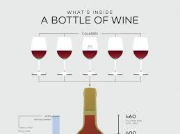 wine facts kinds of wine best 25 bottle of wine ideas on wine infographic