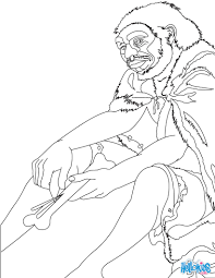 homo sapiens coloring pages 12 prehistory coloring books for