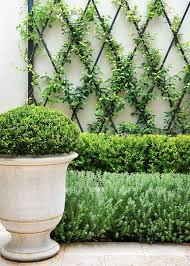 Trellis Garden Ideas Garden Trellis Ideas 10 Of The Best Emeryn