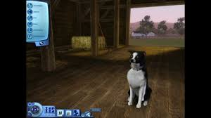australian shepherd sims 3 let u0027s play die sims 3 showtime part 36 tag der hunde youtube