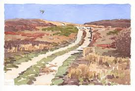 sandplain grassland taking flight